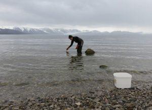 Blog_Spitsbergen_2016_7_foto_2_897x650