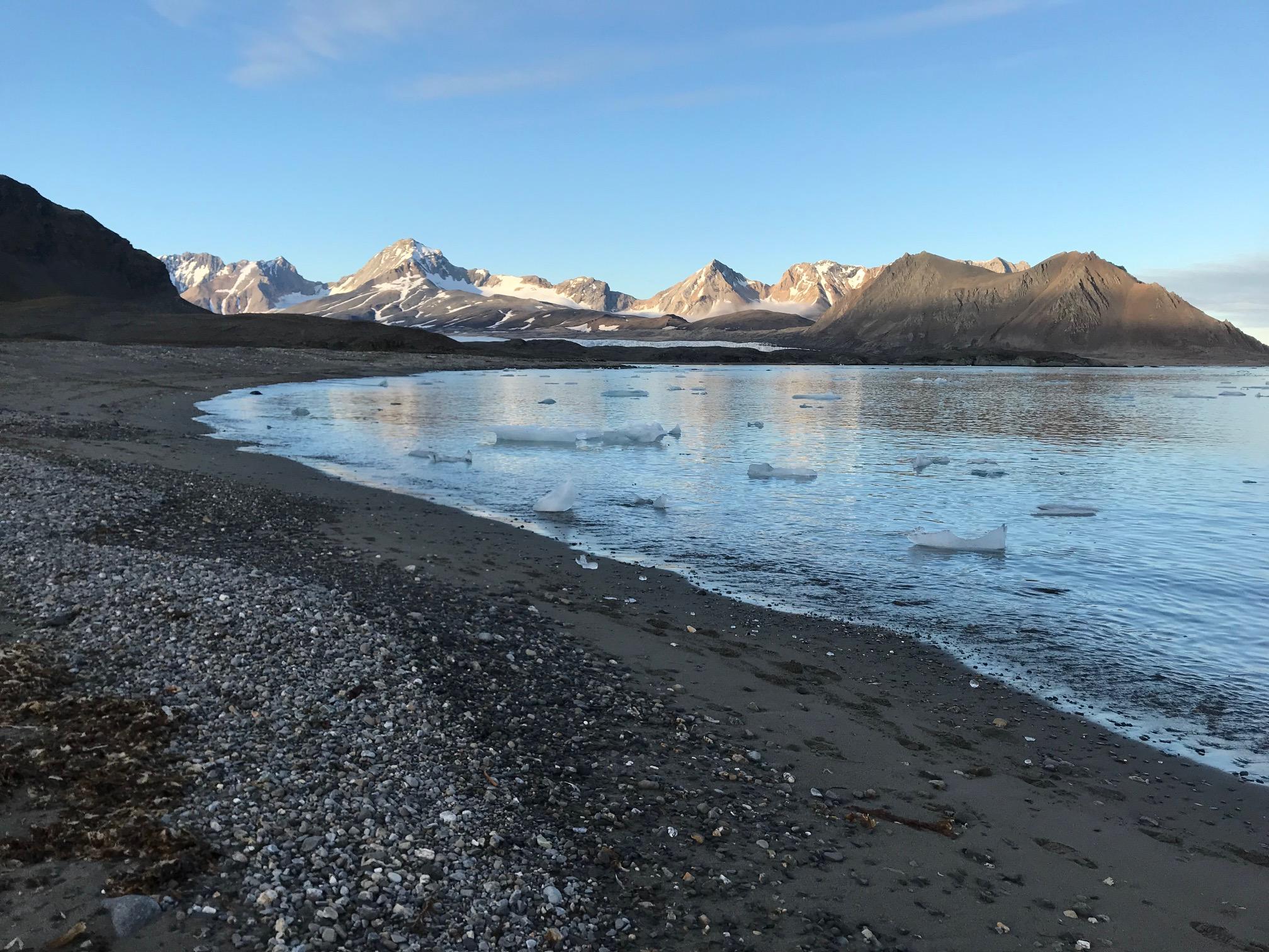 Icebergs in the water near the glacier at Hornsund (photo by Anneke van den Brink)