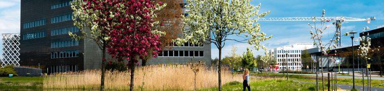 wageningen-university-campus-spring