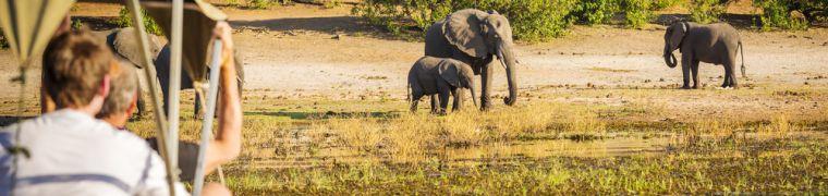 Ecotourism in Botswana